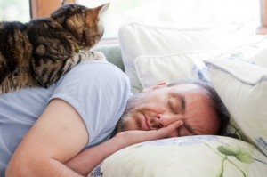 iStock photo 17246501 Man and Old Cat